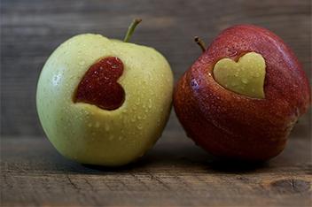 Menús dietéticos elaborados bajo supervisión médica